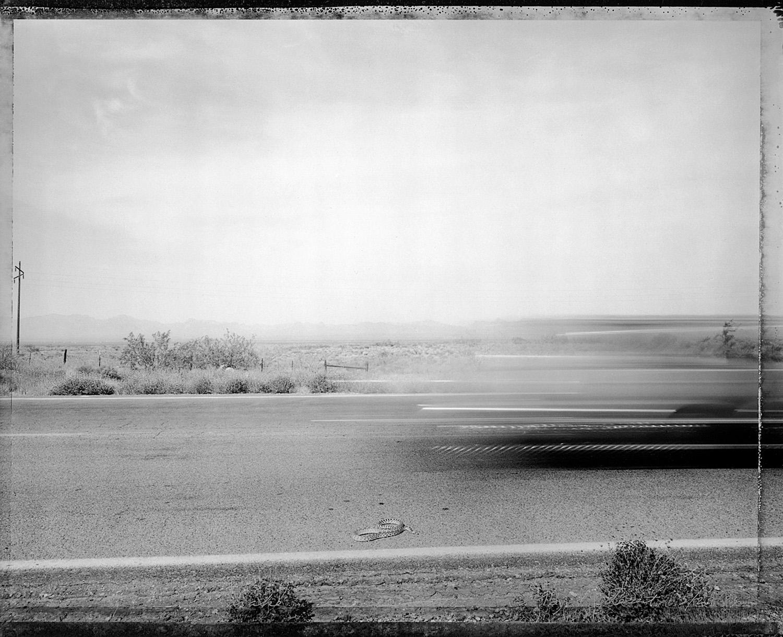 Car passing snake, eastern Mohave Desert, 1983