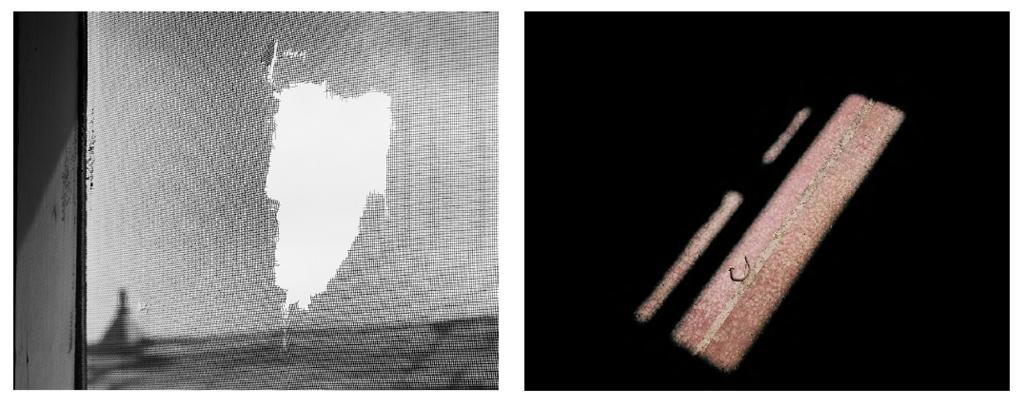 Hole in screen, enlisted men's barracks; Bent nail on floor, enlisted mens' barracks
