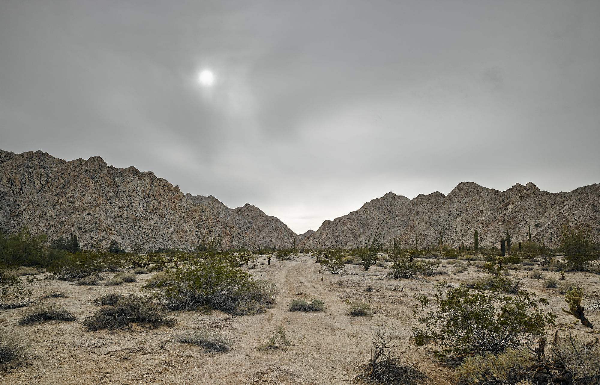 Faint Trail granitic Mtns 2000.jpg
