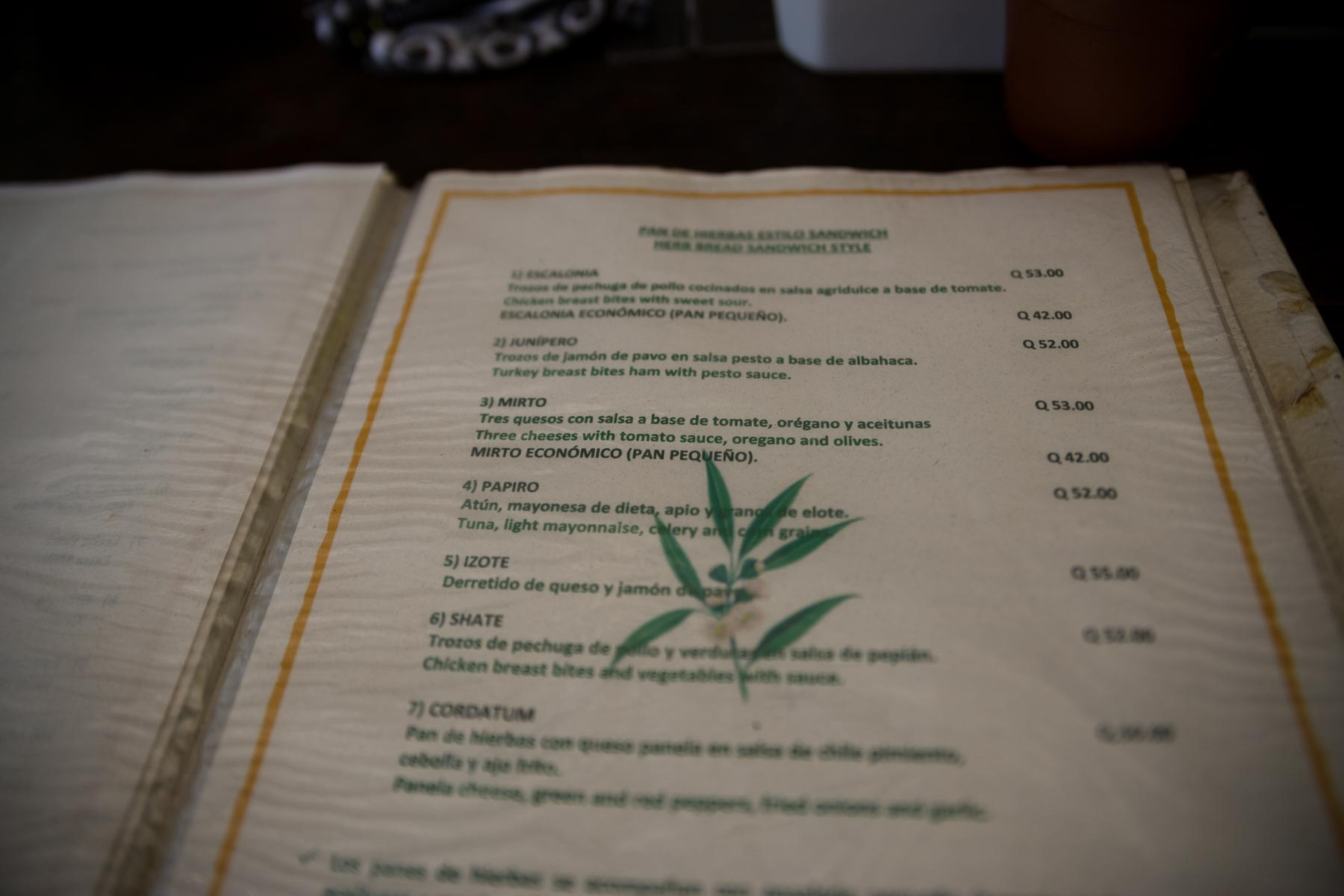 vivero_y_cafe_de_la_escalonia (2 de 20).jpg