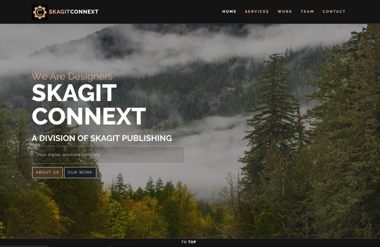 Screenshot of the SkagitConnext.com website.