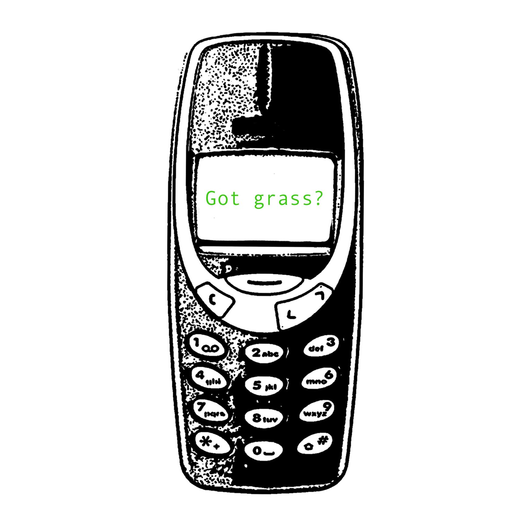got grass.jpg