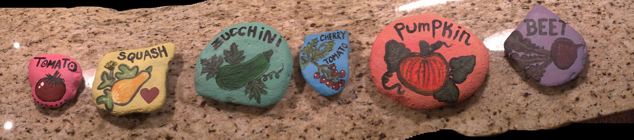 Check out these cool garden rocks! One of the many crafts-y projects courtesy of Skye this summer.