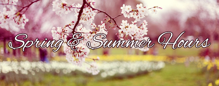 images-of-spring-flowers-and-wallpapers-6.png