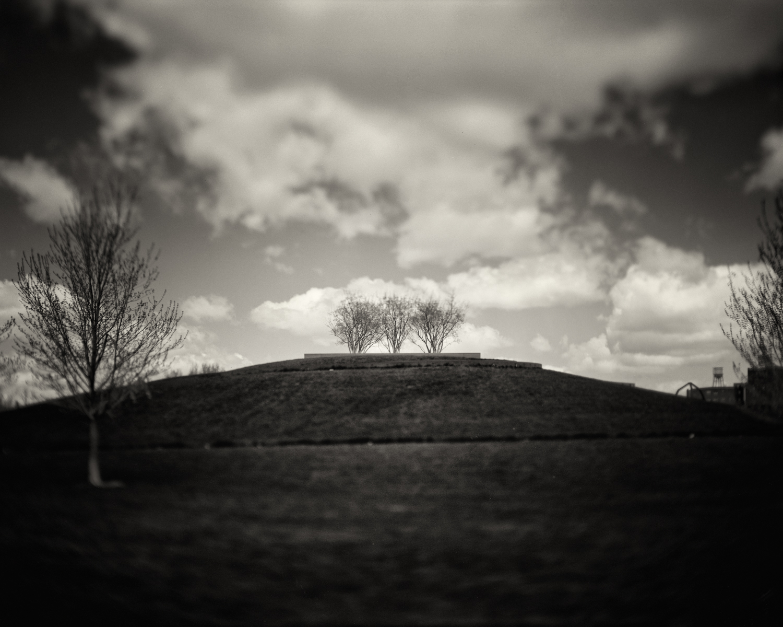 Dammel Photo Works-4.jpg
