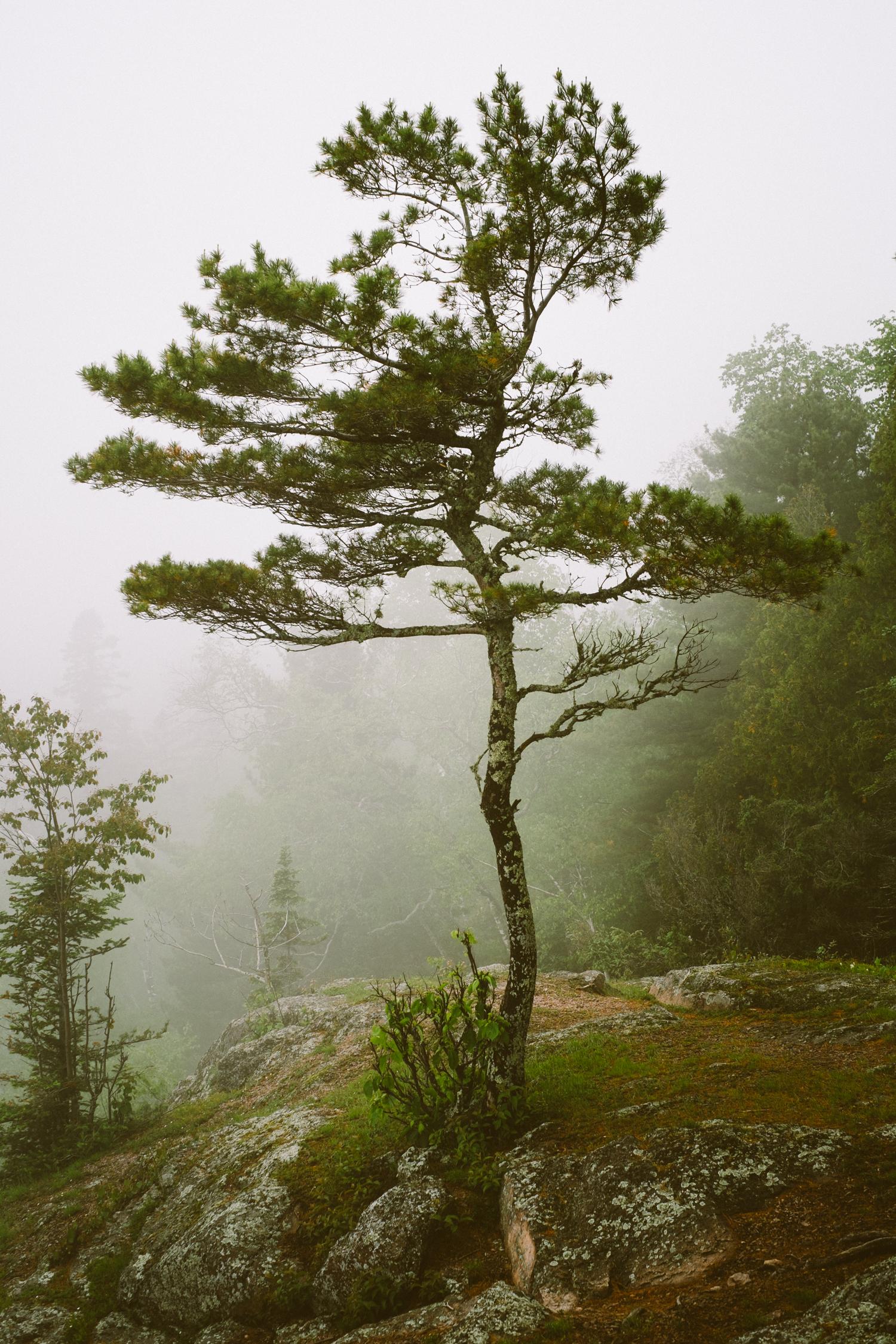 Tettegouche State Park