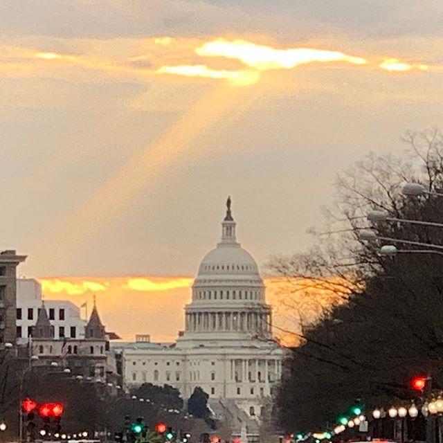 Symbolism? #congress #littlerayofsunshine #straysolo #findthelight