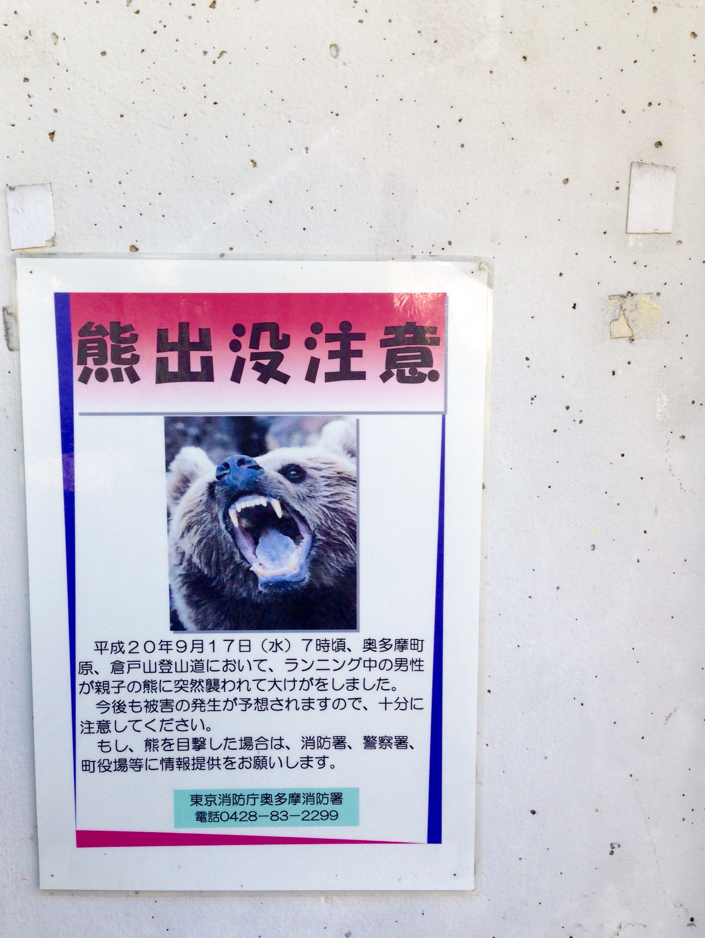 Bear on Tokyo? Yes beware!