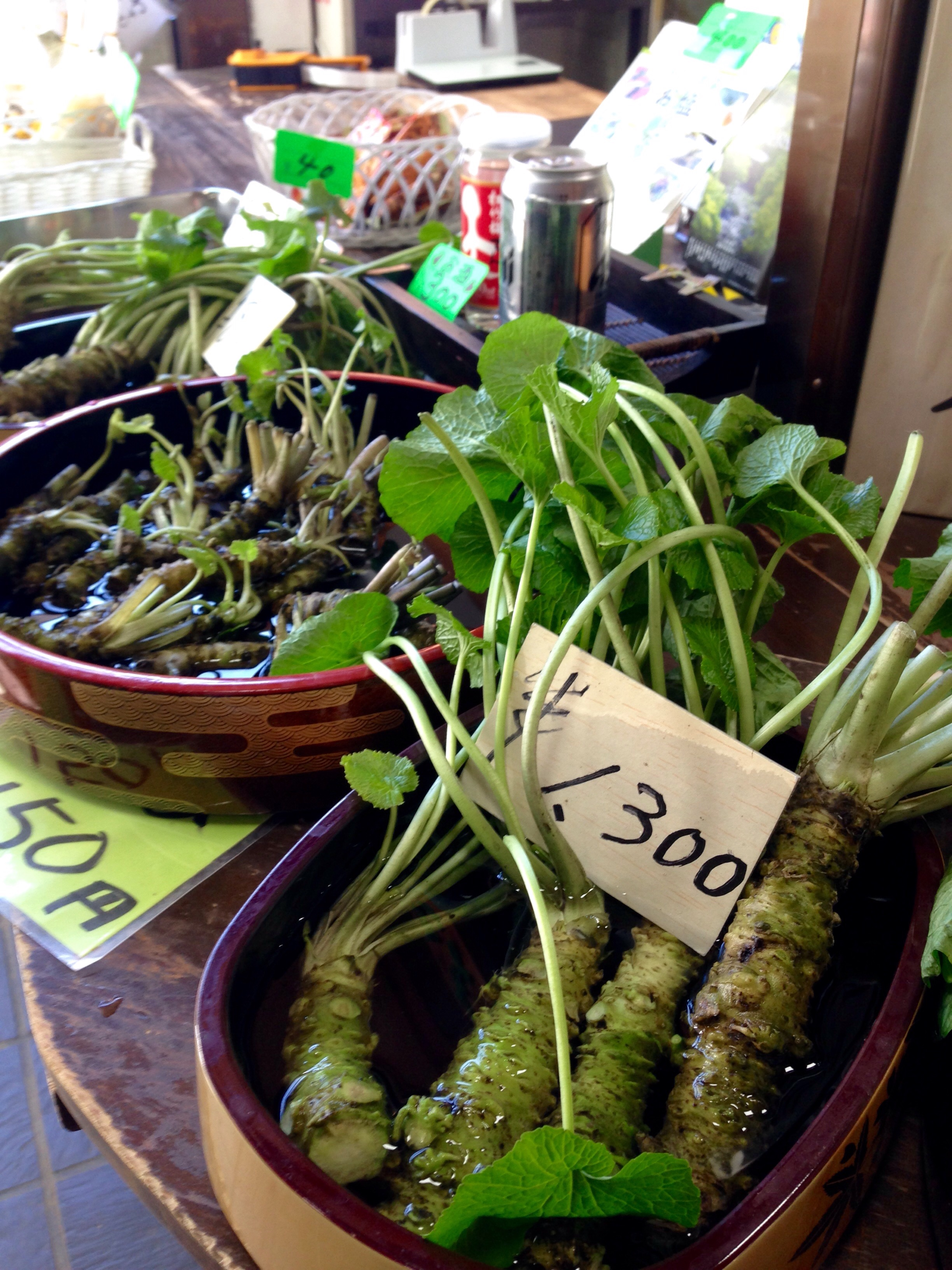 Fresh wasabi for sale