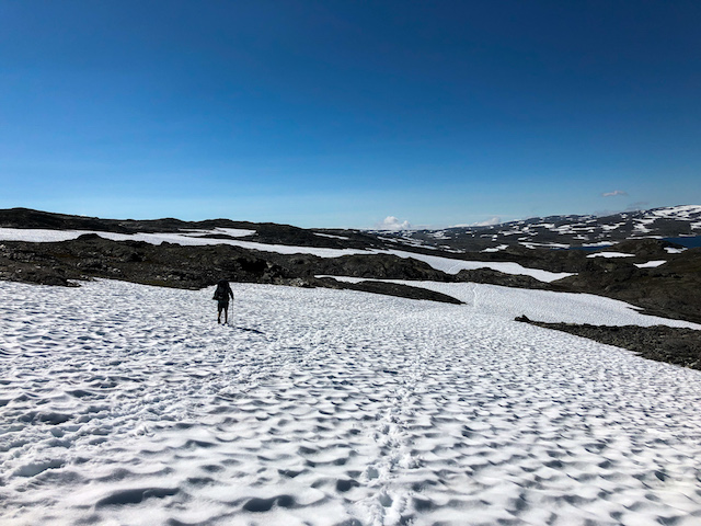 Snow fields as far as the eye can see.