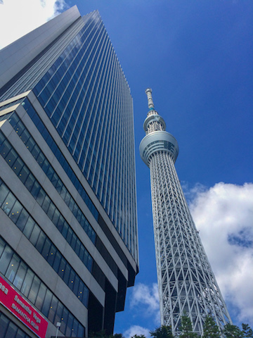 Skytree, the tallest tower in the world and second largest structure.