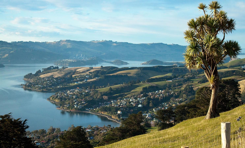 Dunedin , new zealand