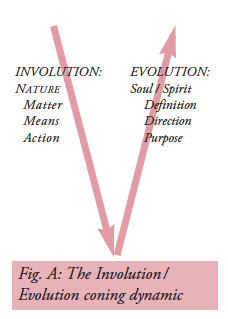 Figure 42. The Involution / Evolution Coning Dynamic. Small Wright (1997, 11)