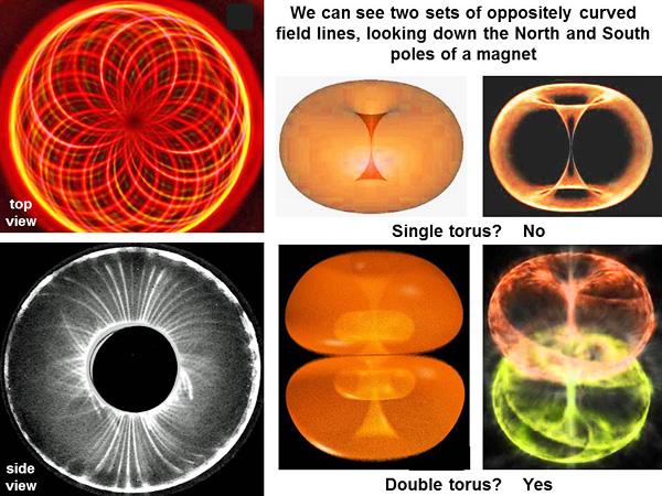 Figure 11: Anasazi on magnetic fields and the double torus