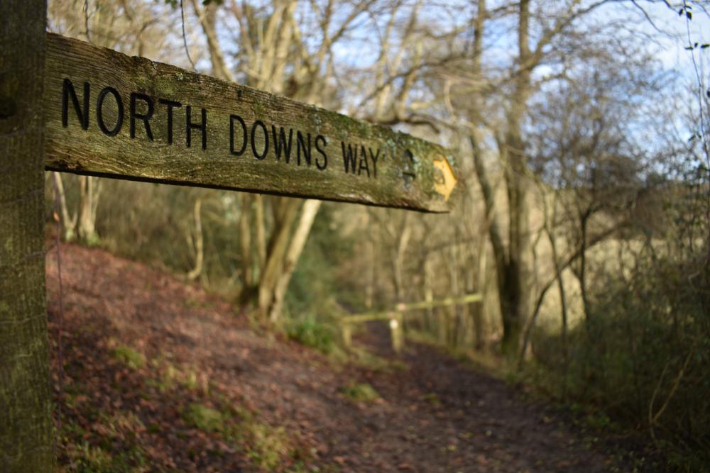 An essential British journey: the North Downs Way  (Rich247/Shutterstock)