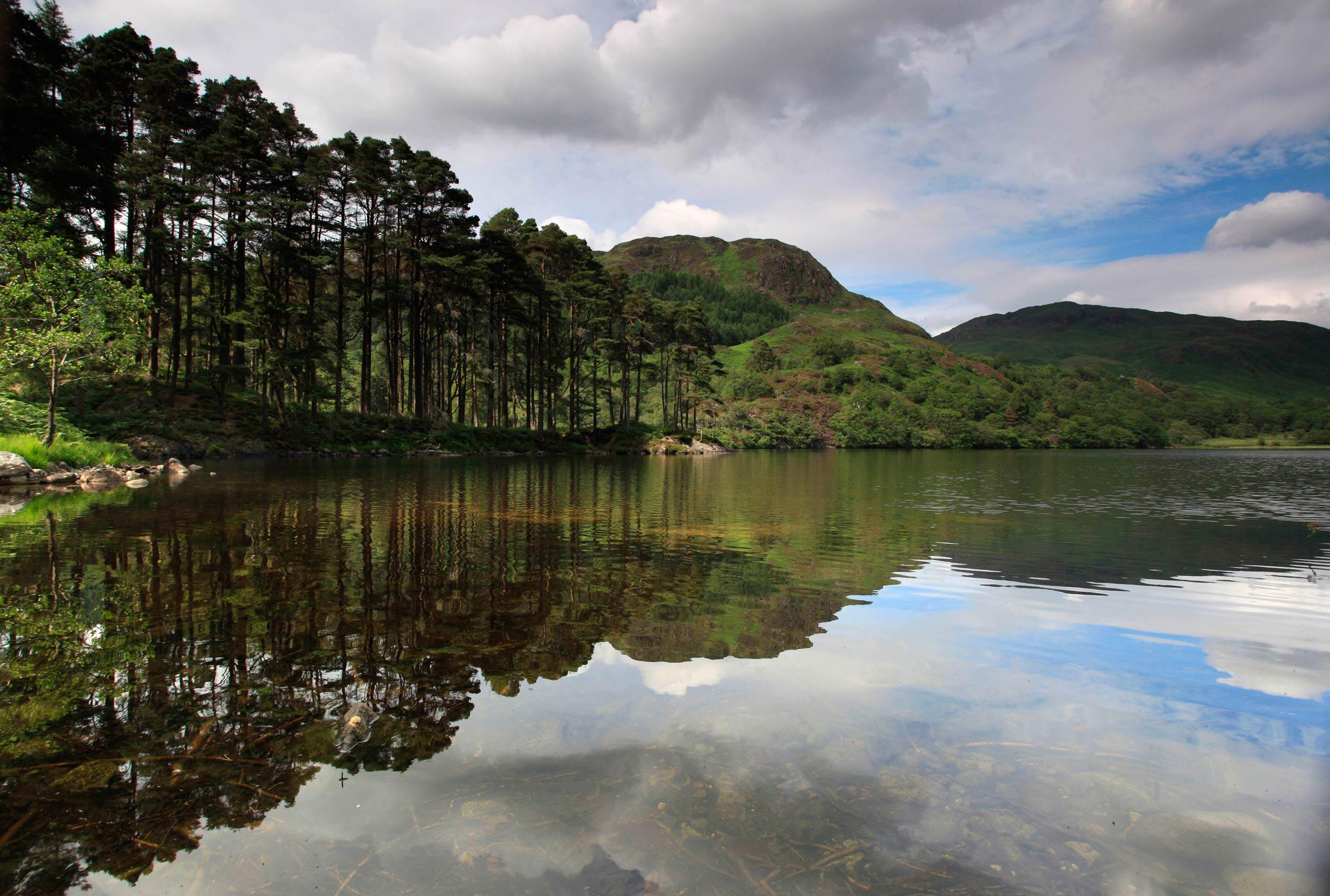 Loch Trool, Galloway Forest Park, Scotland  (VisitScotland)