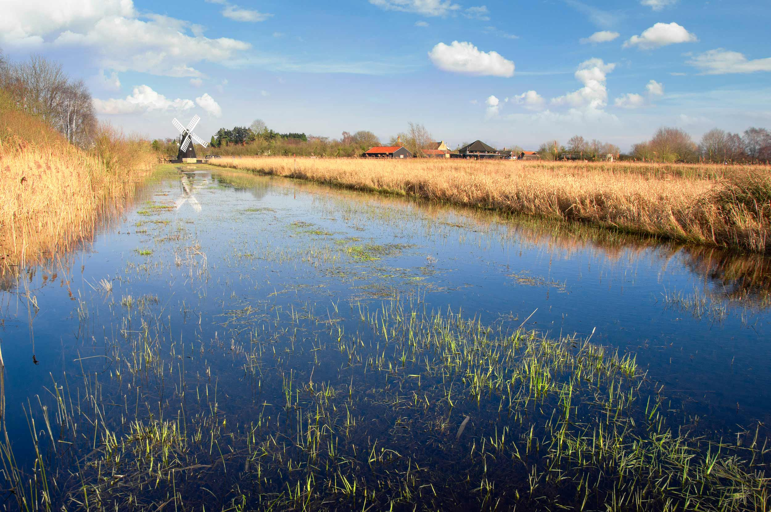 The Fens, England - a marshy region, artificially drained and transformed into arable farming areas, don't you know? (Radek Sturgolewski/Shutterstock)