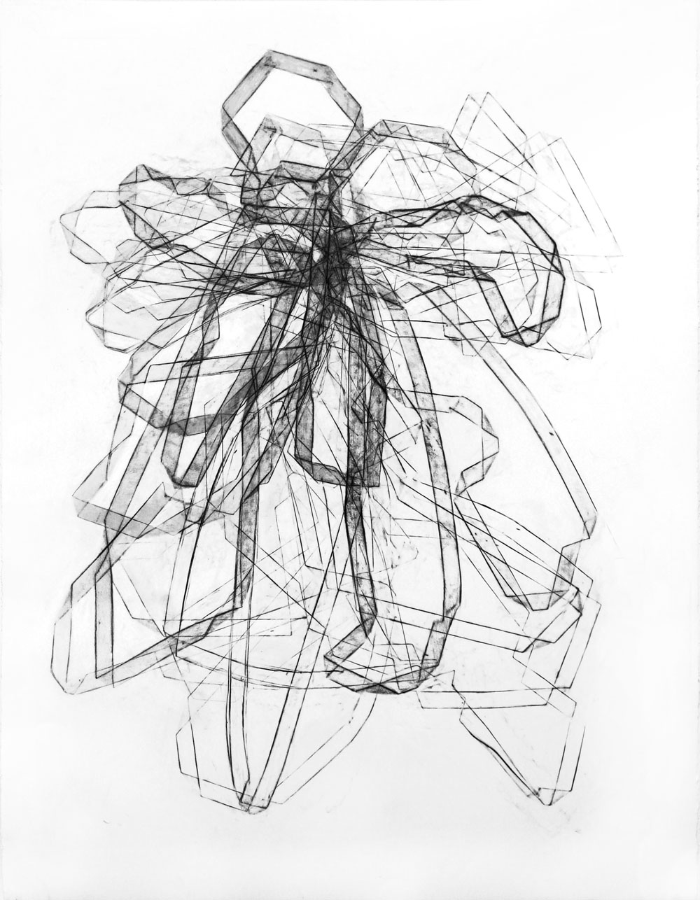 "Entwine 8, 50"" X 38"", Graphite on Paper"