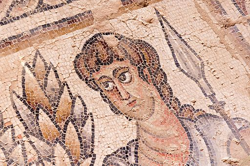 Mosaic from the Nile House in Sepphoris,By Oren Rozen (Own work)via Wikimedia Commons
