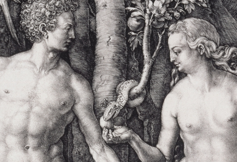 "Albrecht Dürer - ""The Fall of Man"" (1504) 