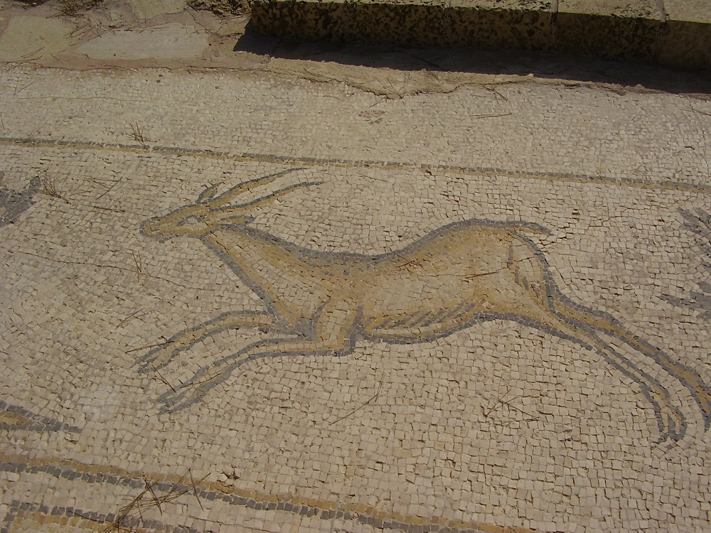 Byzantine-period mosaic of a stag | Caesarea, Israel |  Image Source