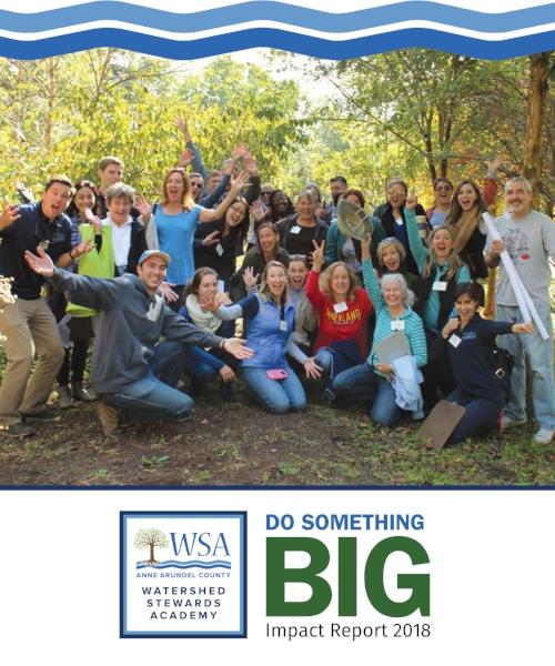 Final WSA Do Something Big Report Web image.jpg