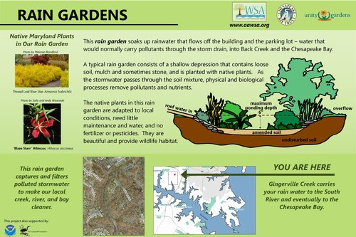 PDF Files:    Rain Garden - No Mow    Conservation Garden    Conservation Landscape - Annapolis Landing    Rain Garden - Gingerville    Publisher Files:    Rain Garden - No Mow    Conservation Garden    Conservation Landscape - Annapolis Landing    Rain Garden - Gingerville