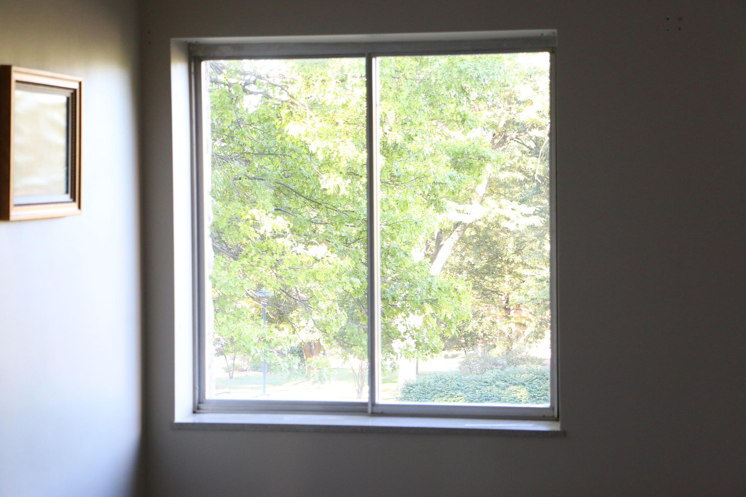 window_100215_9.jpg