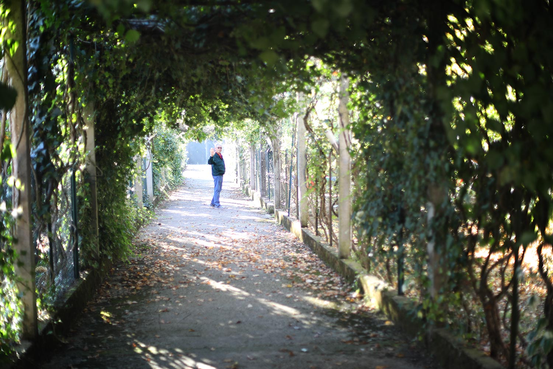 Pilgrimage_Rome_3668_VicovaroStrathman.jpg