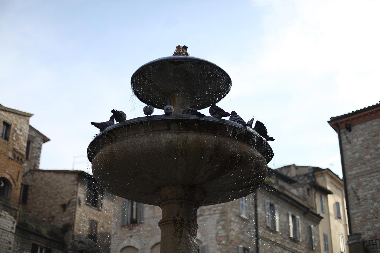 Pilgrimage_Rome_4062_Assisi.jpg
