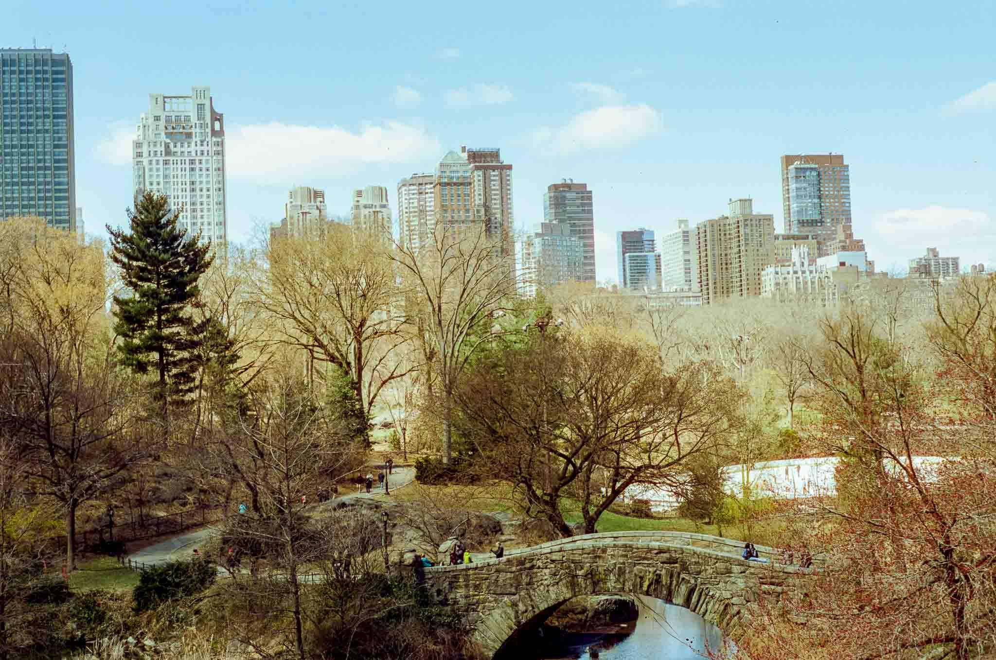 New-York-Skyline-Central-Park.jpg
