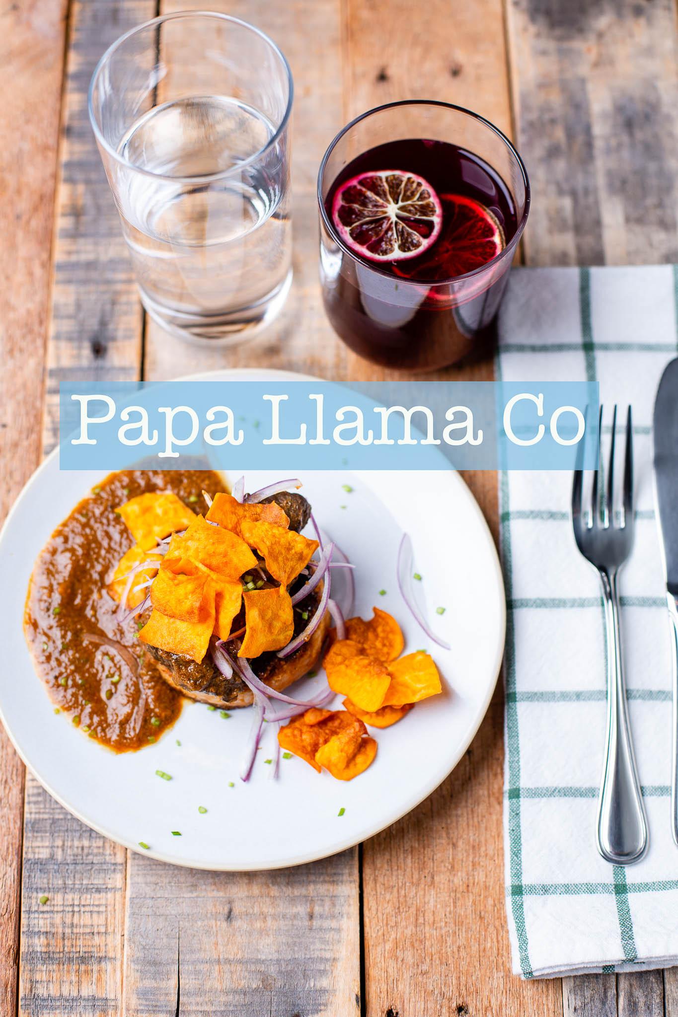 Papa_Llama_Website Header.jpg