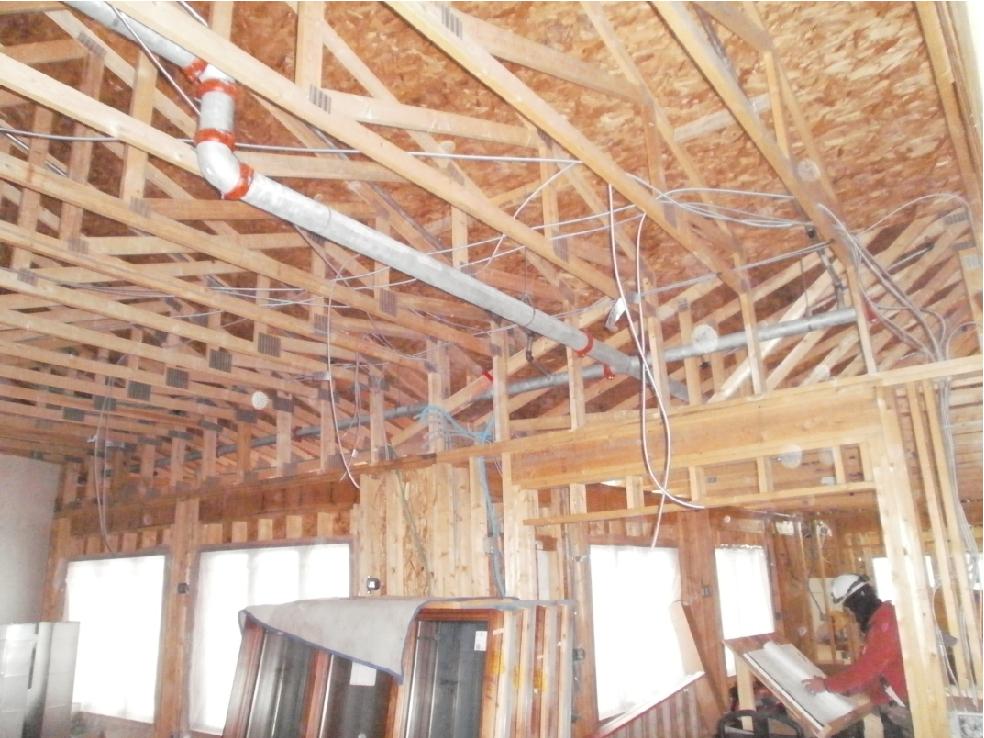 Pine Haven 12-5-14-05.jpg