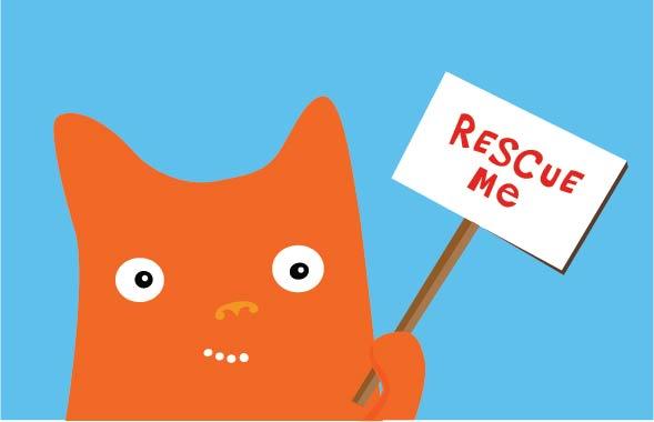 Kiefer rescue.jpg