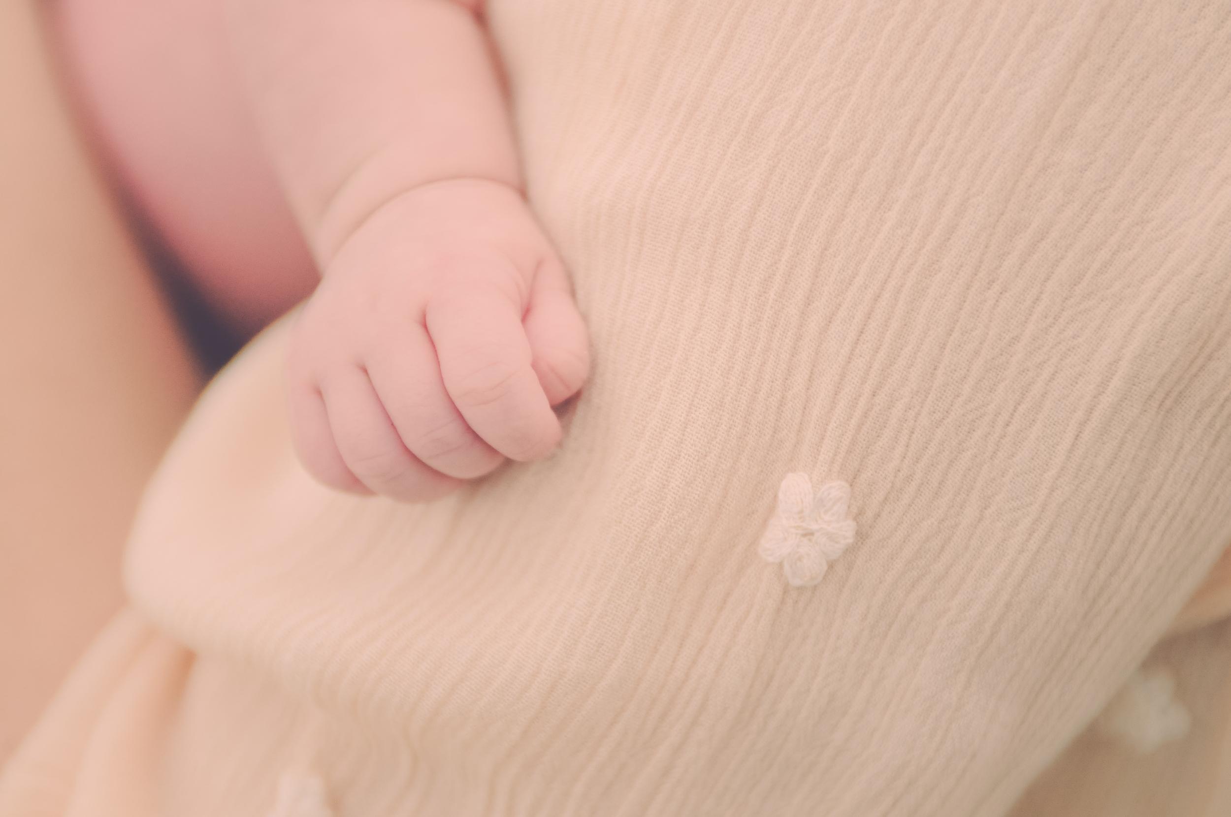 Newborn Photo Session