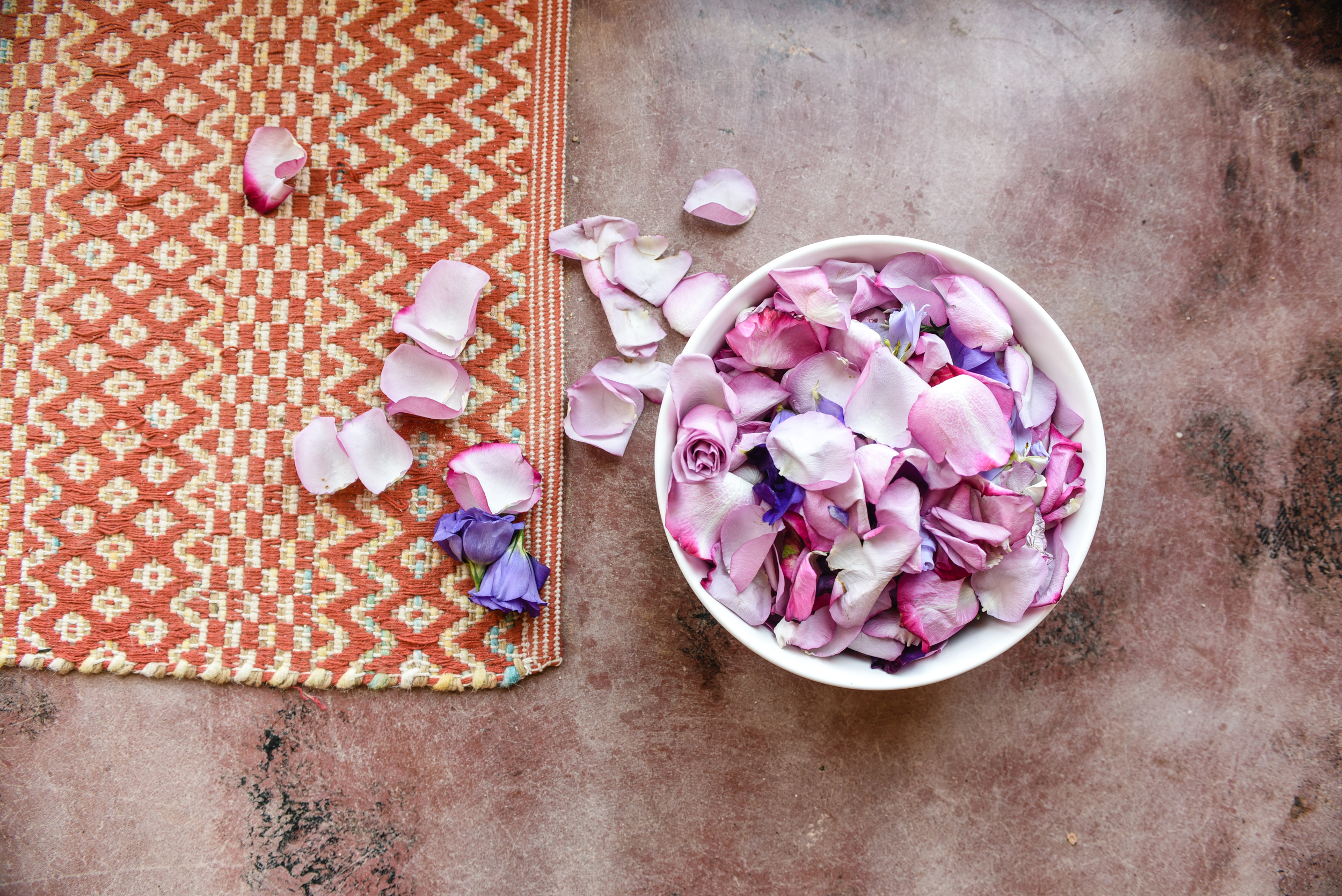 rose petals, minimalistic, minimal rose photo, joshua tree