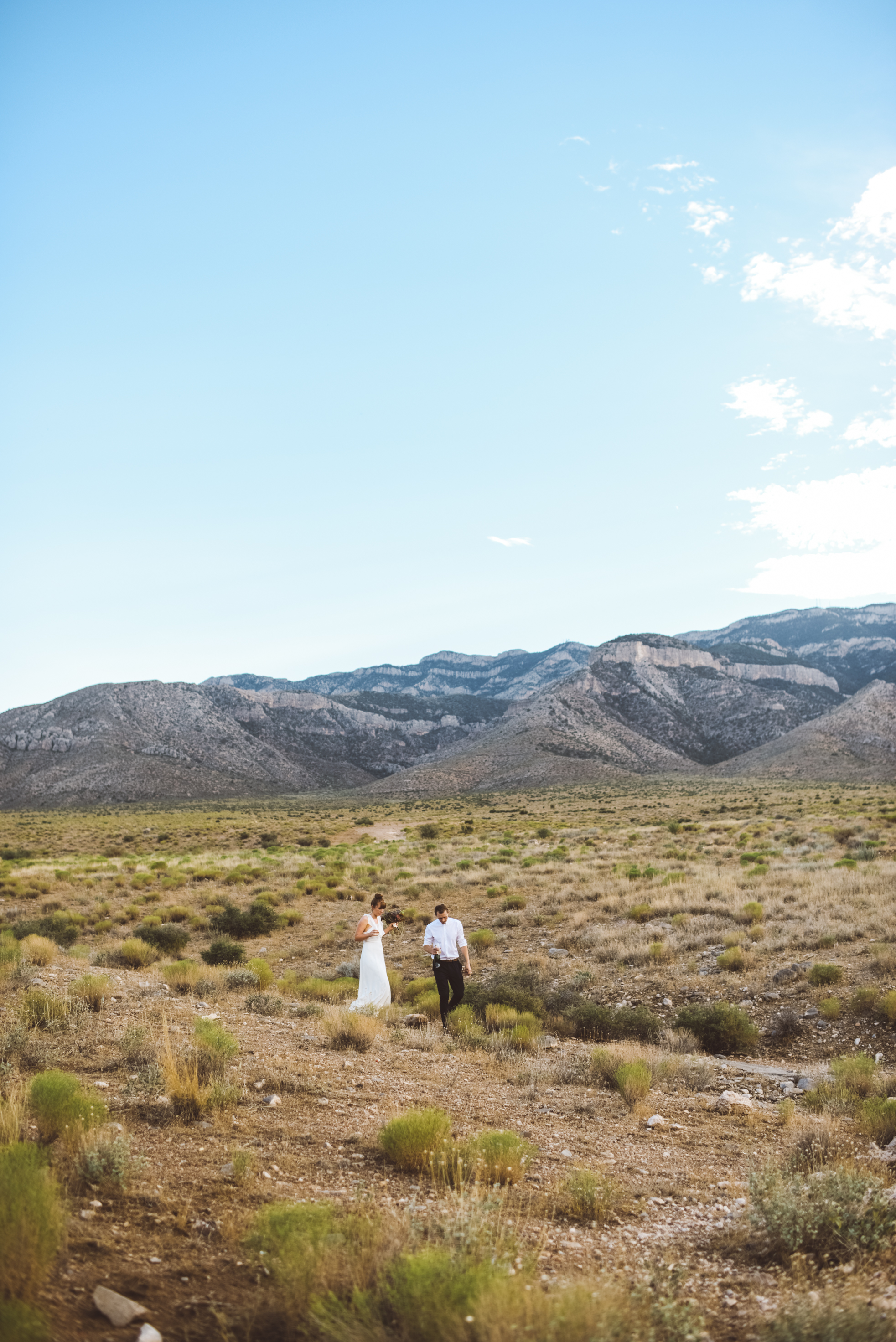 FLora Pop Desert Ceremony Red Rock Las Vegas Photography by Ashley Marie-137.jpg