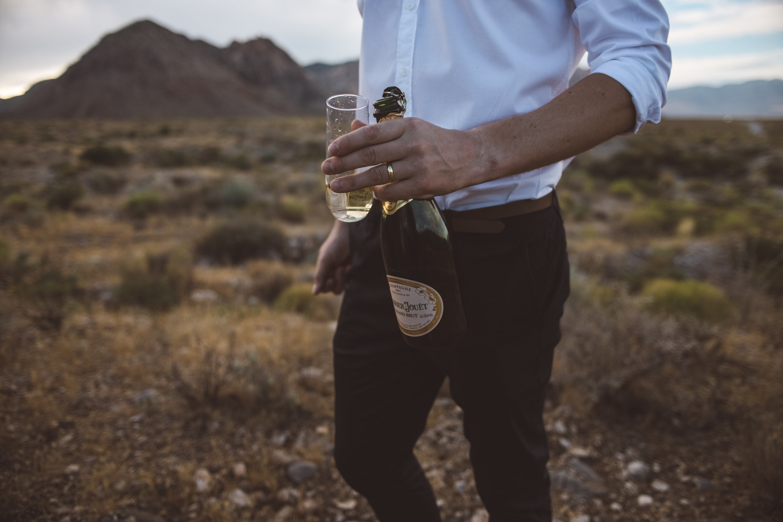 FLora Pop Desert Ceremony Red Rock Las Vegas Photography by Ashley Marie-162.jpg