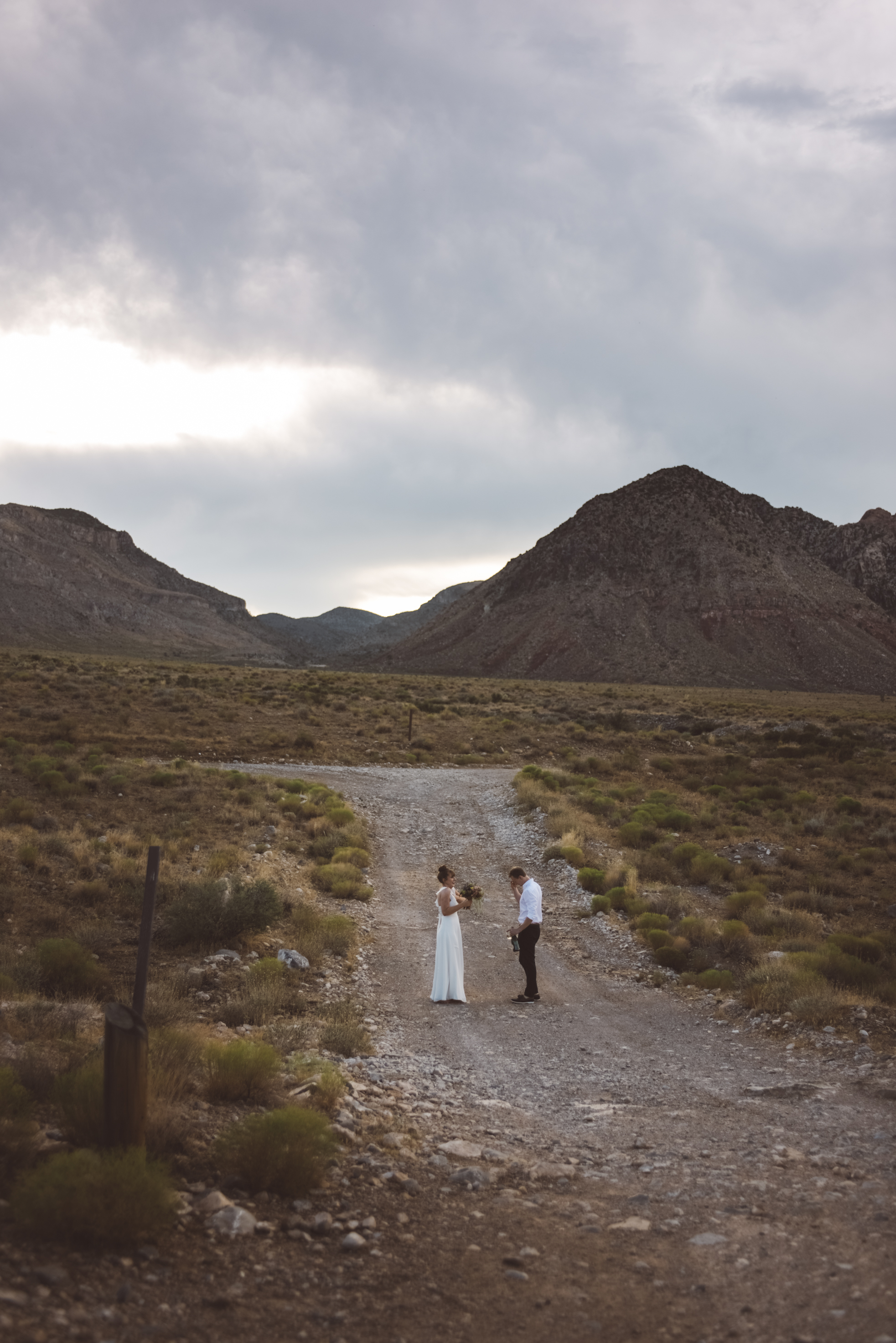FLora Pop Desert Ceremony Red Rock Las Vegas Photography by Ashley Marie-166.jpg