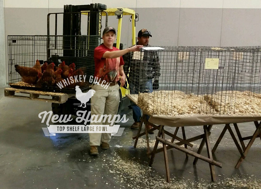 Mike Omeg at Poultry Show
