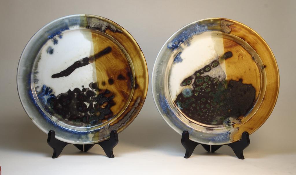 14 dinner plates_2011.JPG