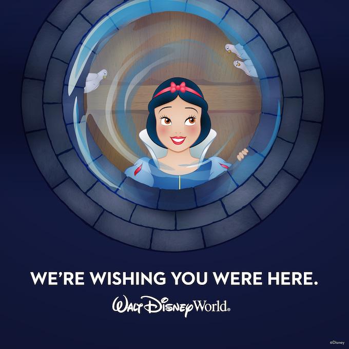 Walt Disney World Spring Offer