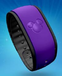 Purple Magic Bands Now Available.