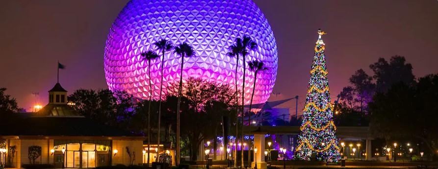2019 Christmas Package for Walt Disney World Resort