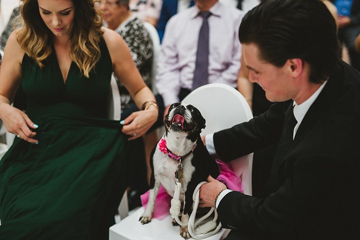 Jane+Jordan_1312_viva_love_philadelphia_wedding_photographer.jpg