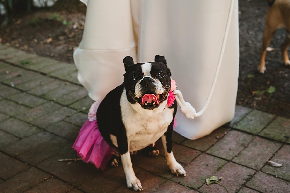 Jane+Jordan_3053_viva_love_philadelphia_wedding_photographer.jpg