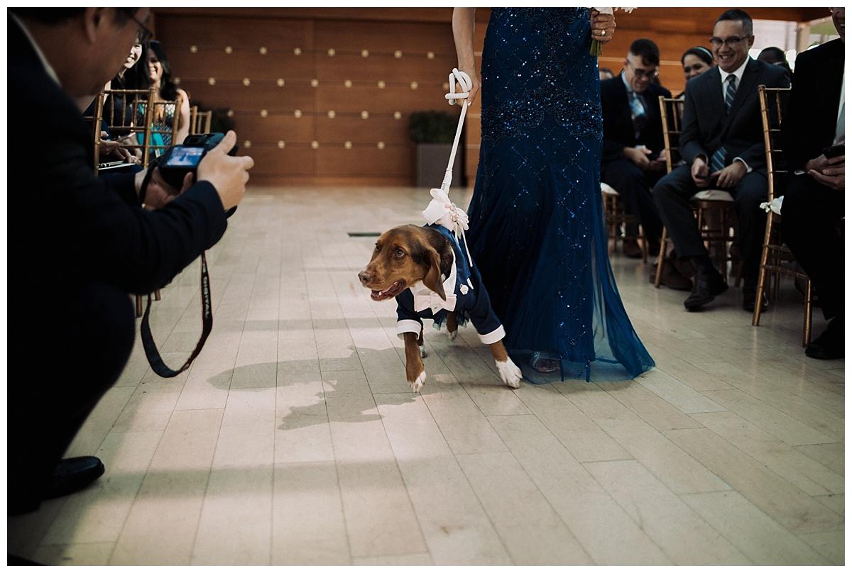 judy-claude-wedding-philadelphia-photographer_0407.jpg