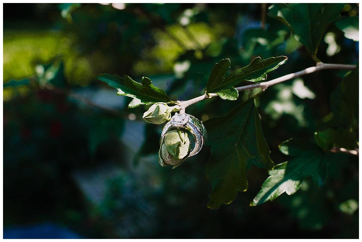 vivalove-sarah-zac-new-hope-pennsylvania-bowman-tower-wildflower-preserve-wedding_0109.jpg