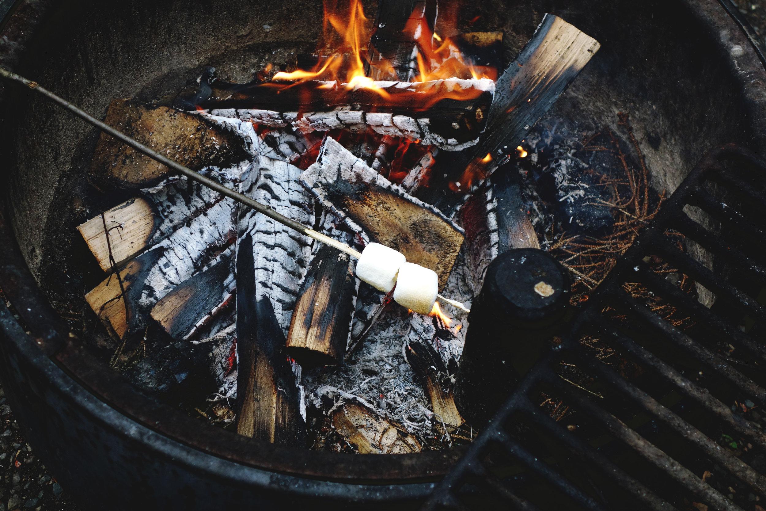 roasting marshmallows.jpg