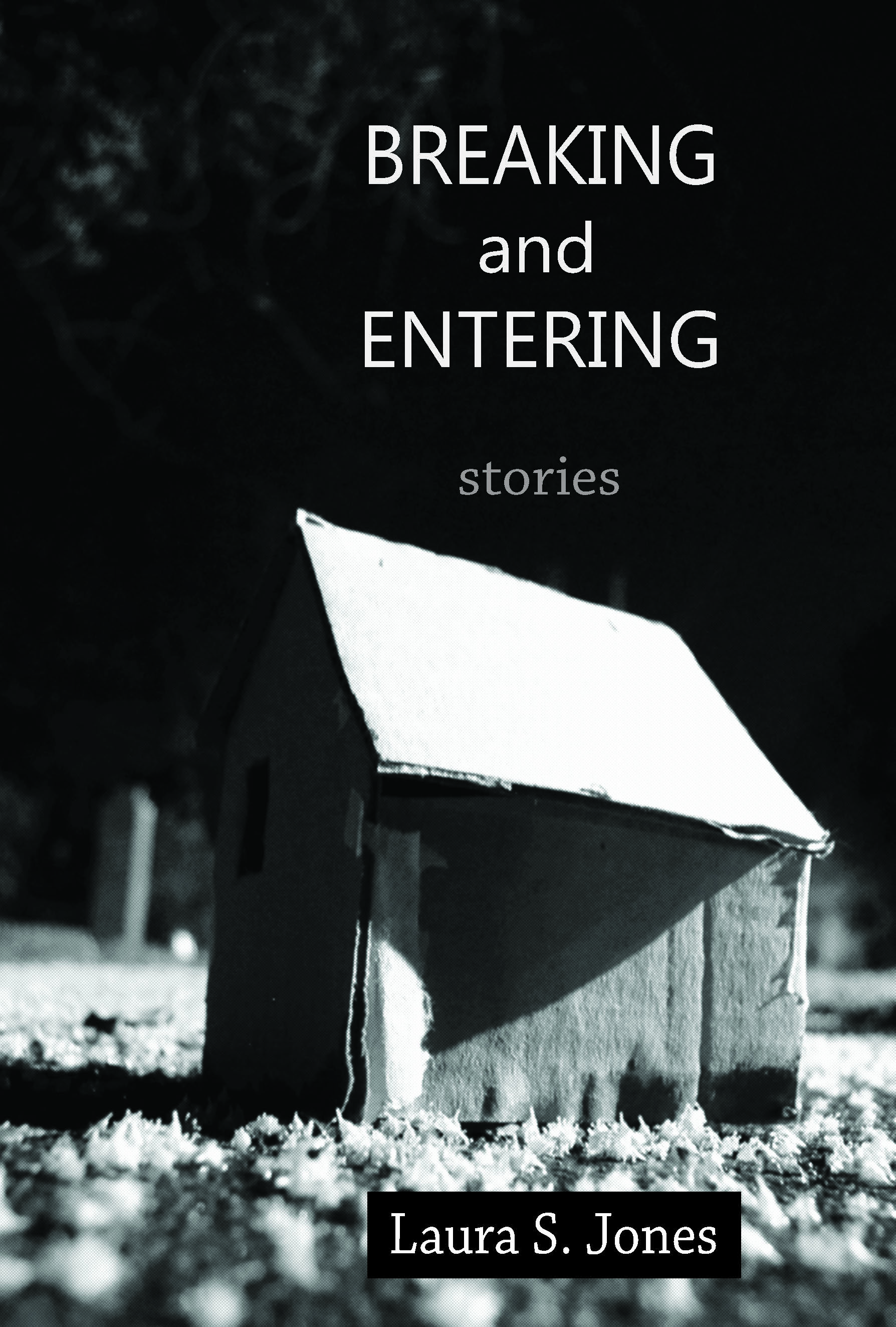 Breaking and Entering - a debut story story collection from Laura S. Jones